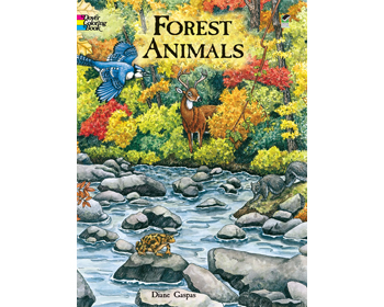 Forest Animals Litabók - 9780486413167
